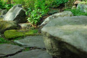 moss boulder