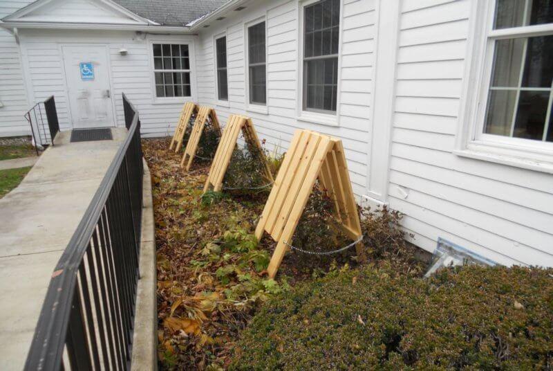 Winter Plant Protection Archives Christie Dustman