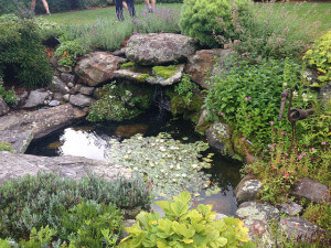 Water feature at Distant Hills Farm
